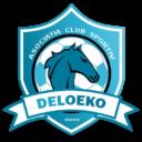 Acs Deloeko Brasov