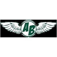 logo aripile brasov